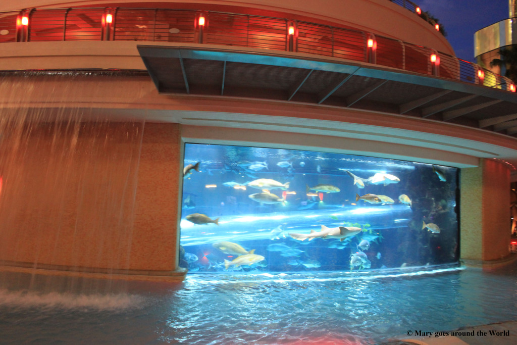 USA Rundreise - Las Vegas und Yosemite Nationalpark - Golden Nugget Aquarium