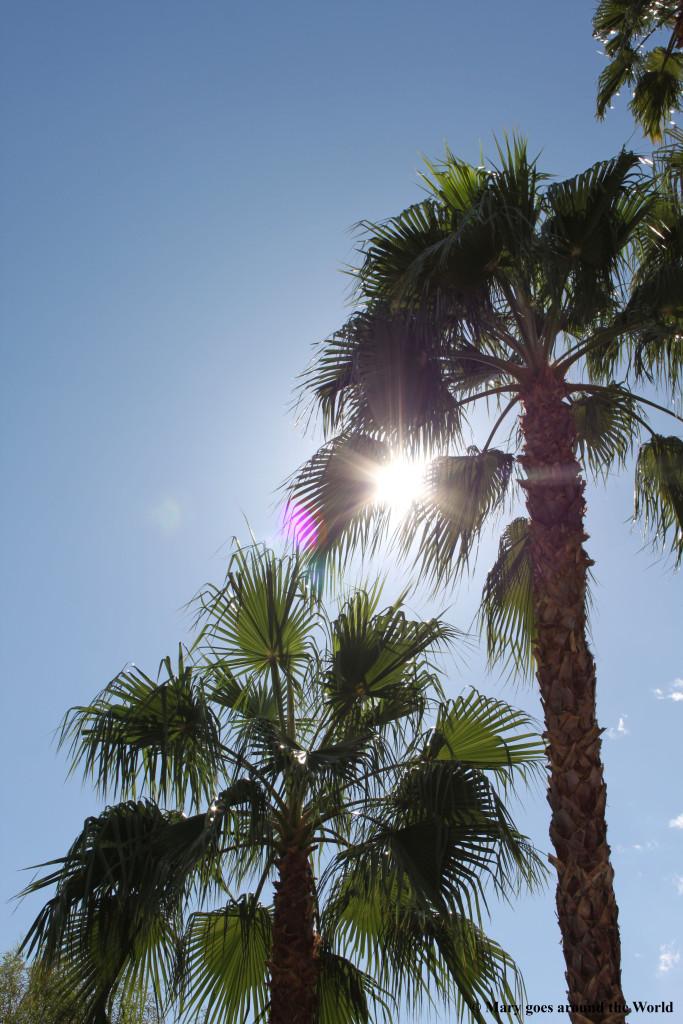 USA Rundreise - San Diego - Grand Canyon - Palms Springs