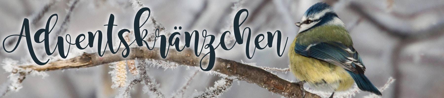 Blogparaden im Advent - Adventskränzchen