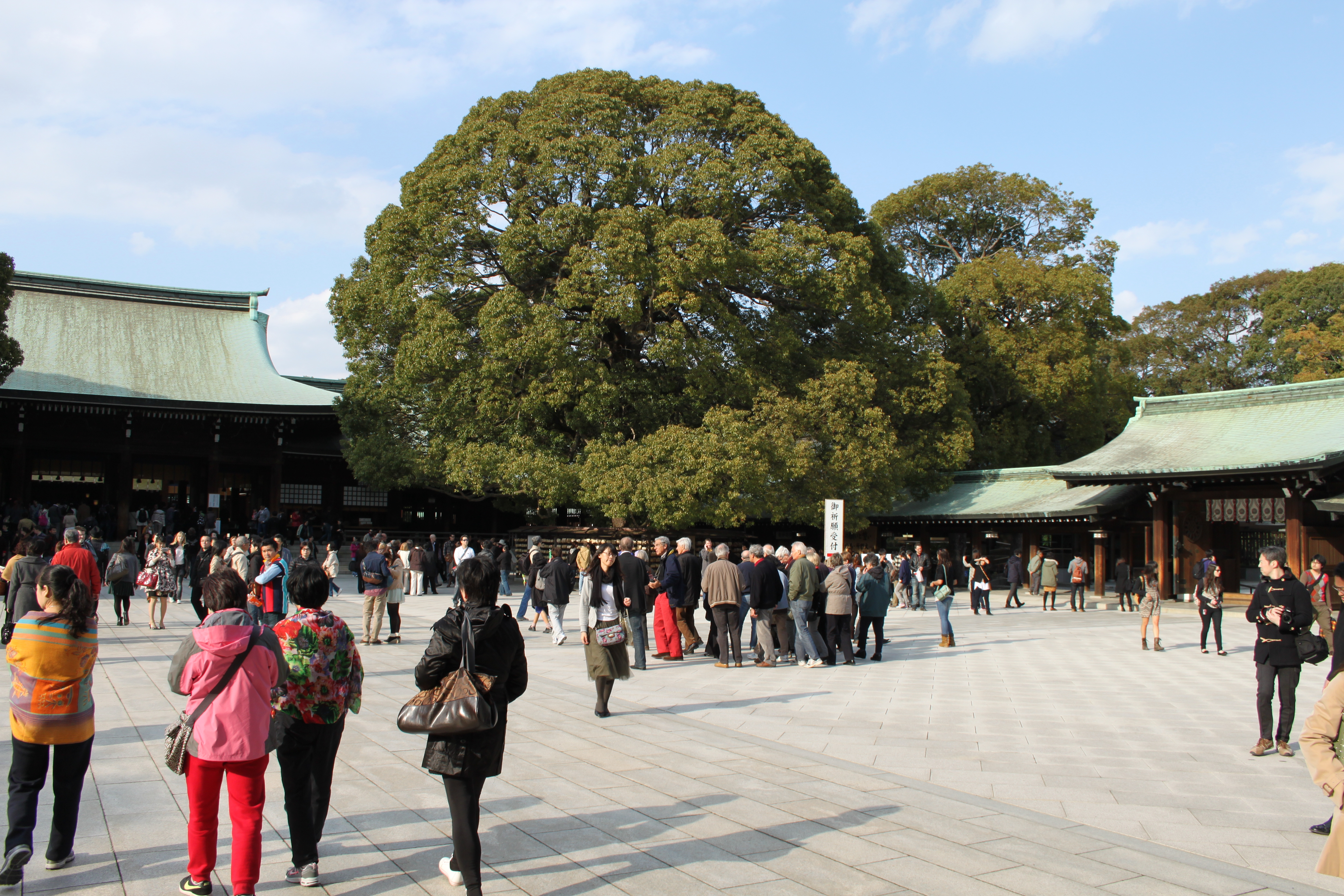 5 Tage in Tokio - Harajuku - Meiji Schrein