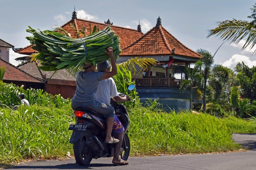 Bali Rundreise – Wissenswertes während der Reise - Verkehrsmittel